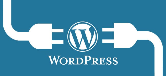 WD explored's wordpress for your website