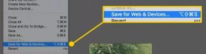 Save for the web in Photoshop elements